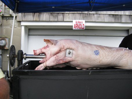 pig-fresh-on-spit